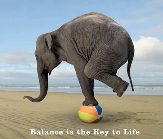 http://www.livelifeactive.com/wp-content/uploads/2014/03/Balance-is-the-key-to-life1.jpg